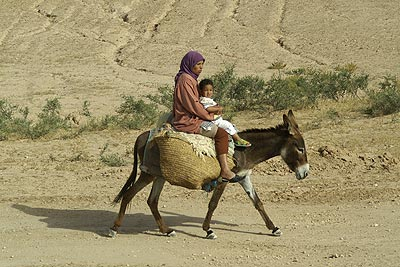 Woman on donkey, Marrakech