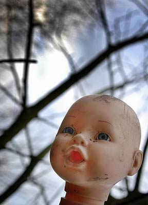 Dolls head placed on tree branch