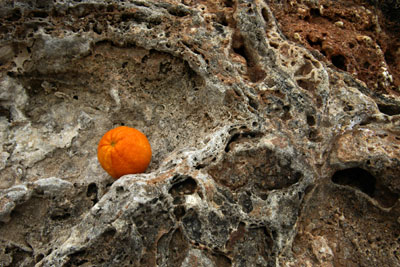 Orange placed on cliff face